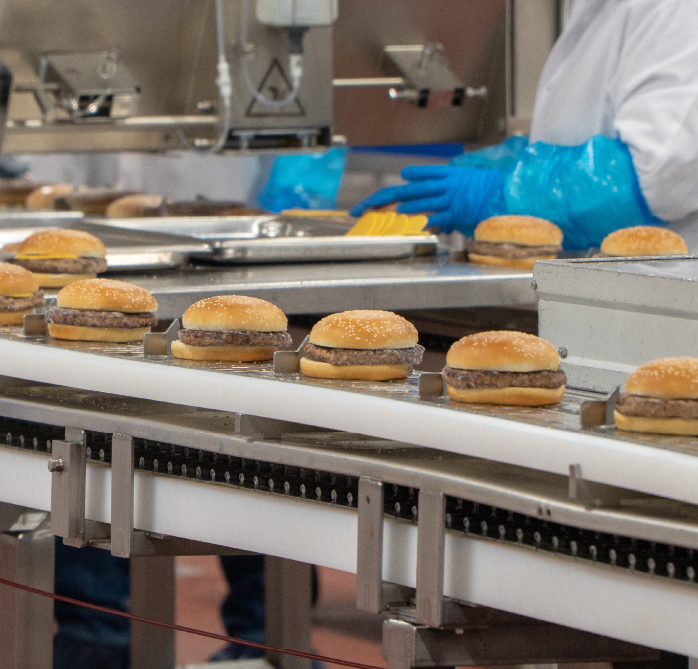 Sandwiches on production line